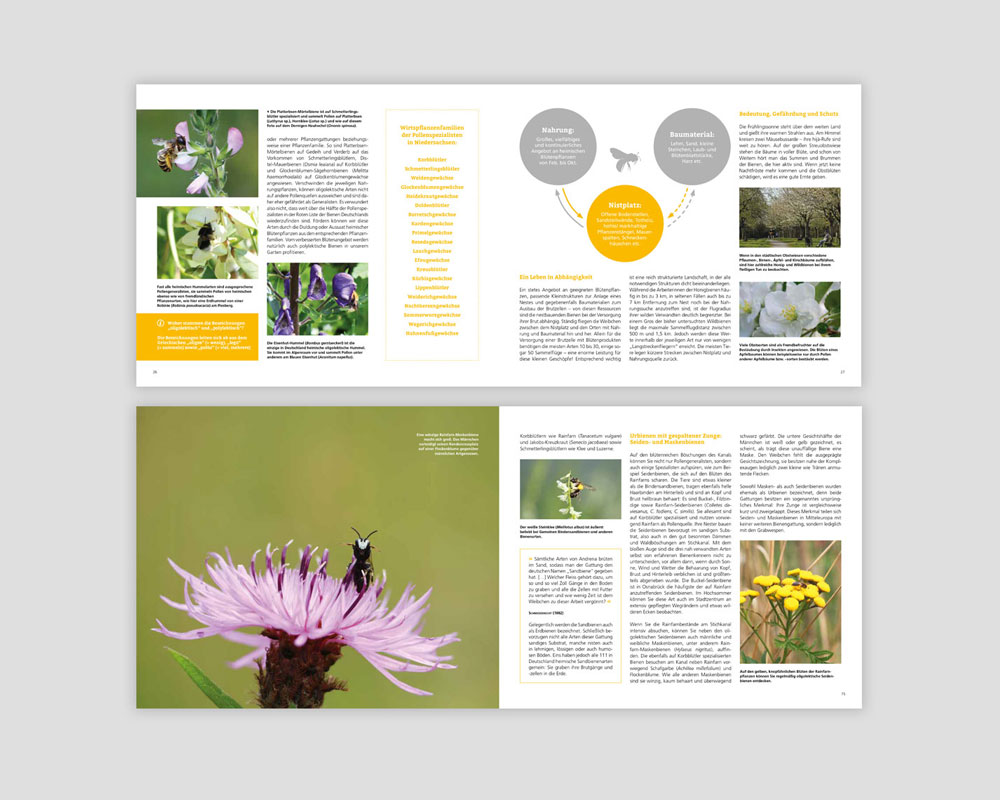 JD Designstudio | Werbeagentur & Webdesign | Buchgestaltung