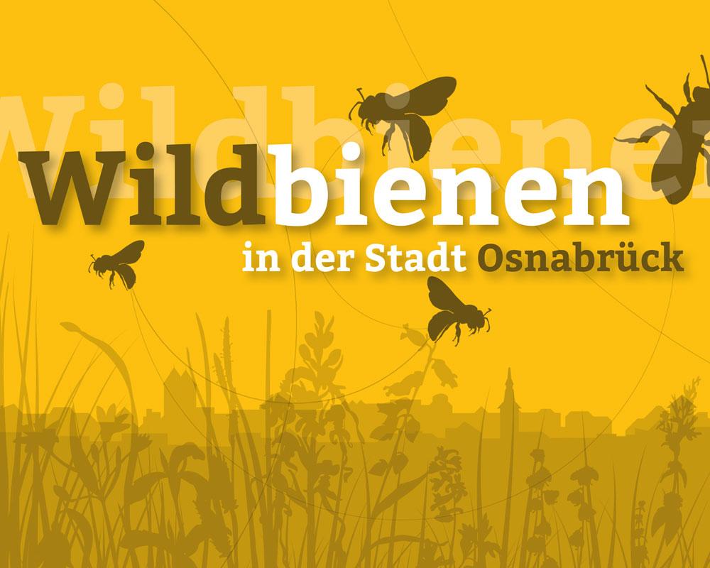 Buchgestaltung Wildbienen Osnabrück